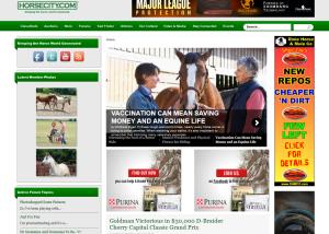 Horsecity.com portfolio hc 300x214